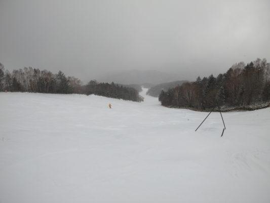 今日は終日雪降り、明日の予報は晴れ