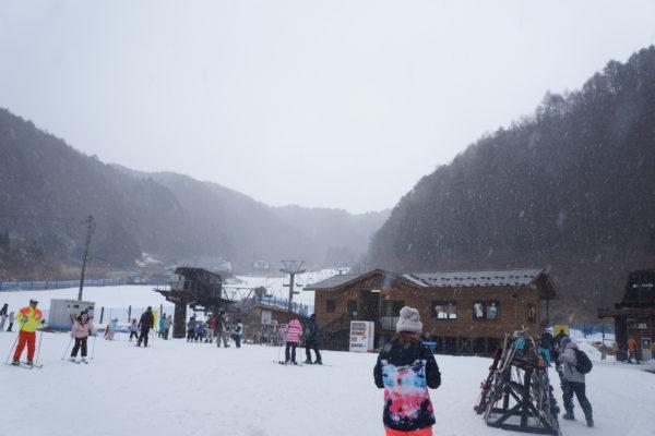 【追記有り】雪が降り出しました~