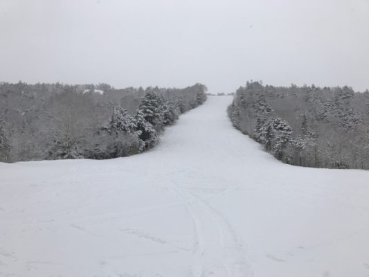 今日は雪降りでした