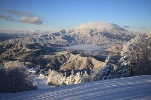 雪降り後の朝一番