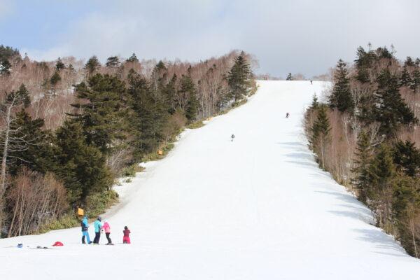 上部は積雪も十分あります。
